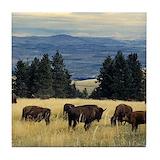 Yellowstone national park buffalo Tile Coasters