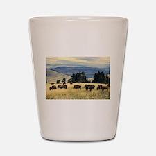 National Parks Bison Herd Shot Glass