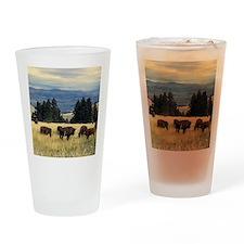National Parks Bison Herd Drinking Glass