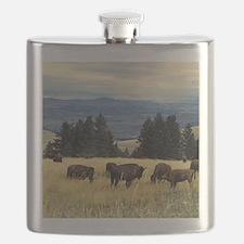 National Parks Bison Herd Flask