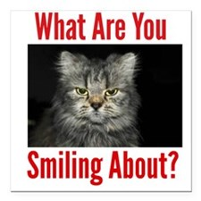 """What Are You Smiling About Square Car Magnet 3"""" x"""