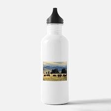 National Parks Bison H Water Bottle