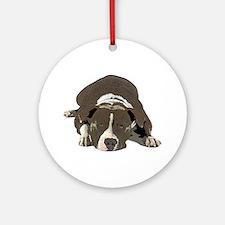 Sleepy Pit Bull look ahead Round Ornament