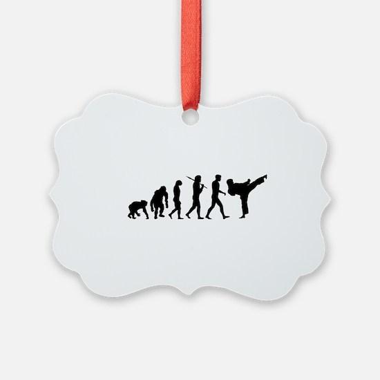 Martial Arts Evolution Ornament
