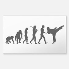 Martial Arts Evolution Sticker (Rectangle)