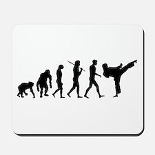 Martial Arts Evolution Mousepad