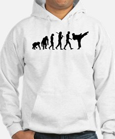 Martial Arts Evolution Jumper Hoody