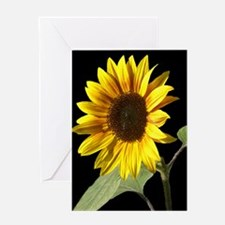 Cool Photography Greeting Card
