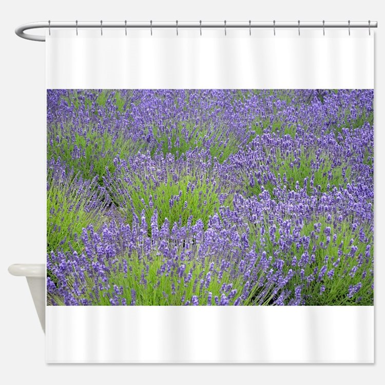 Lavender Field Shower Curtains | Lavender Field Fabric ... Lavender Shower Curtains