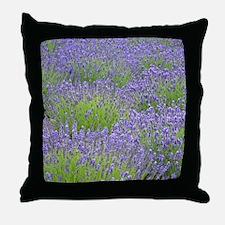 Cute Lavender Throw Pillow