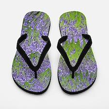Purple lavender field Flip Flops