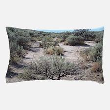 Oregon Trail Pillow Case