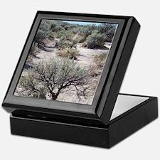 Oregon Trail Keepsake Box