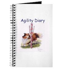 Agility Diary