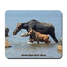 Cow & Calf Moose Mousepad