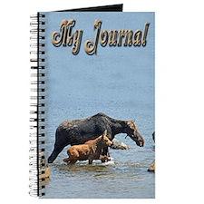 Cow & Calf Moose Journal