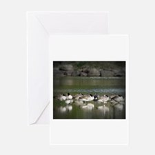 Canadian Geese Greeting Cards