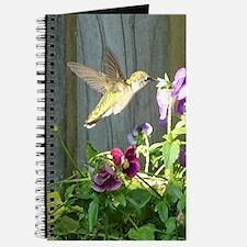 Pansy Hummingbird Journal