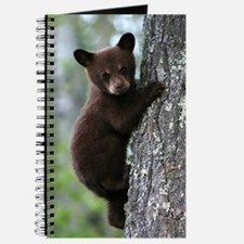 Bear Cub Climbing a Tree Journal