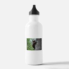 Bear Cub Climbing a Tr Water Bottle