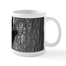 Bear Cub Climbing a Tree Mugs