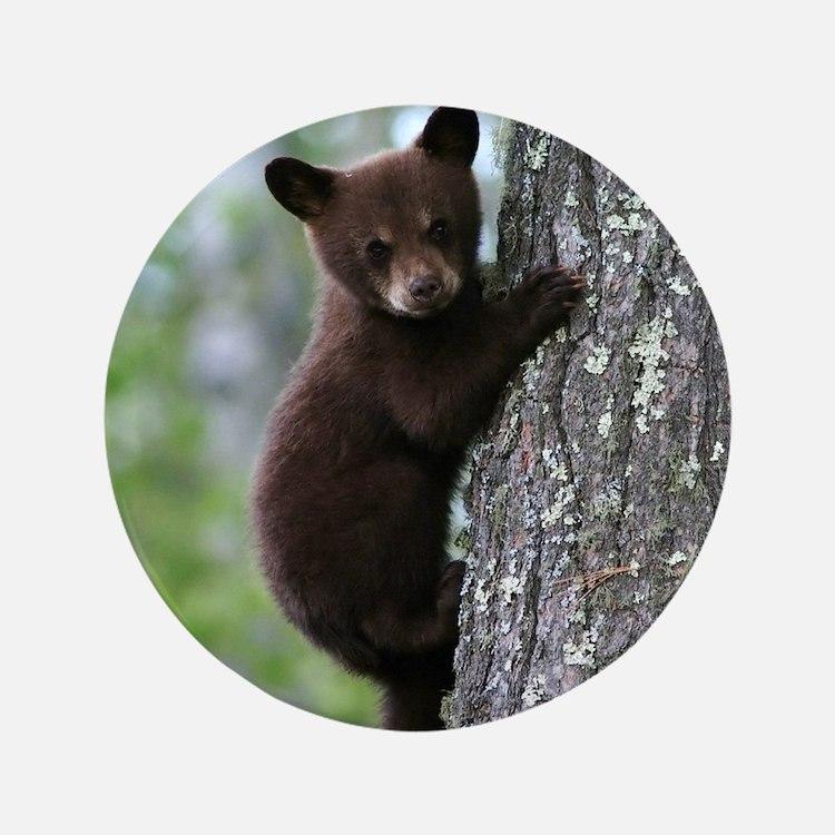 Bear Cub Climbing a Tree Button