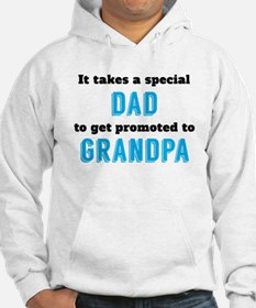 Promoted To Grandpa Hoodie