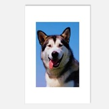 Malamute Photo Postcards (Package of 8)
