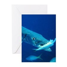 Barracuda eating its prey Greeting Cards