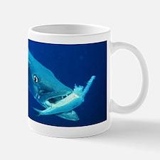 Barracuda eating its prey Mugs