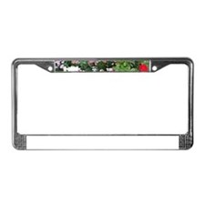 Flowers in bloom, Anchorage, A License Plate Frame