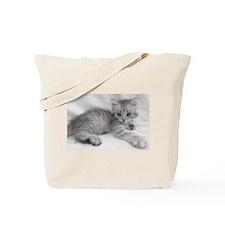Miakira Siberian Kittens Tote Bag