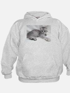 Miakira Siberian Kittens Hoody