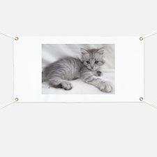 Funny Cat art Banner