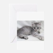 Cute Siberian cat Greeting Card