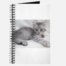 Cute Siberian cat Journal