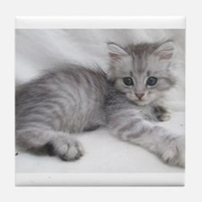 Funny Cute cat Tile Coaster
