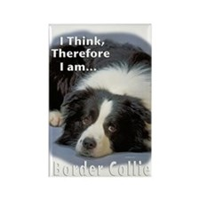 Border Collie-3 Rectangle Magnet