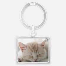 Sleepy Kitten Landscape Keychain