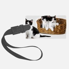 Kitten Trio Basket Luggage Tag