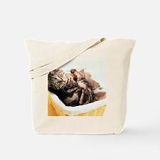 Tabby in Basket Tote Bag