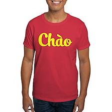 Chao / Hello ~ Vietnam / Vietnamese / Tieng Viet T