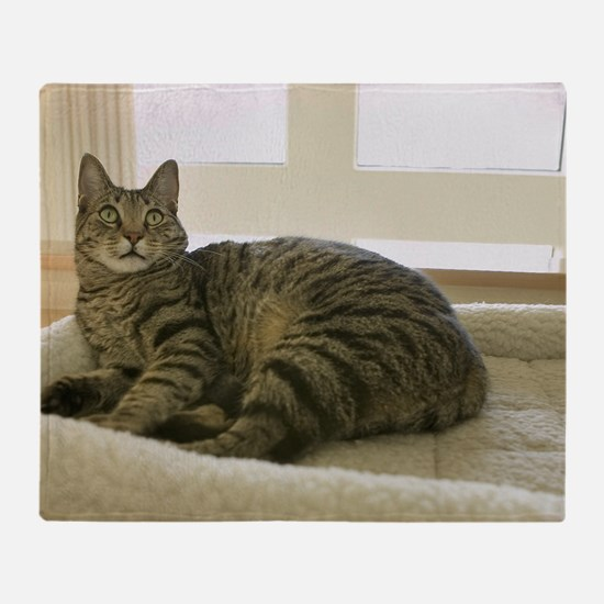 Catbed Kitty Throw Blanket