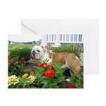 Summer flowers bloomin Greeting Cards (Pack of 6)