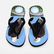 Golf Eagle Flip Flops