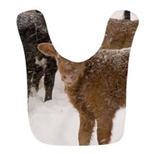 Calves in The Snow Bib
