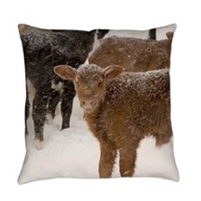 Calves in The Snow Everyday Pillow
