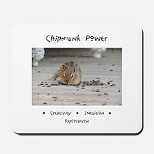 Chipmunk Animal Medicine Mousepad