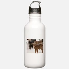 Calves in The Snow Water Bottle