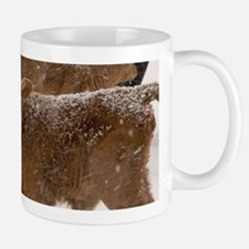 Calves in The Snow Mugs